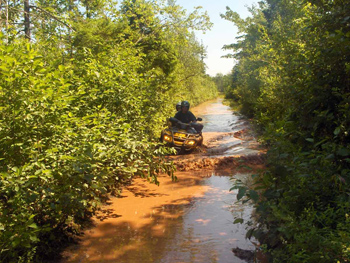Having a little fun on a flooded road on one of the trails